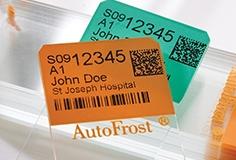 AutoFrost-Slides-printed-English-Design-Studio-