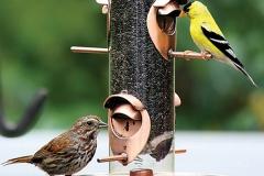 bird-and-birdhouse-English-Design-Studio-Raleigh-